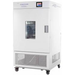 LHH-500SDP大型药品稳定性试验箱