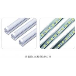 MGC-1000BP-2LLED光照培养箱