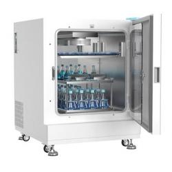 BPNZ-300CD 二氧化碳振荡培养箱
